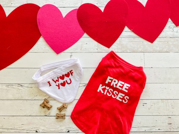 DIY Dog Clothes for Valentine's Day