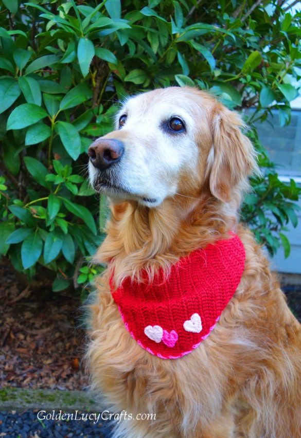 Valentine's Day Crochet Dog Bandana