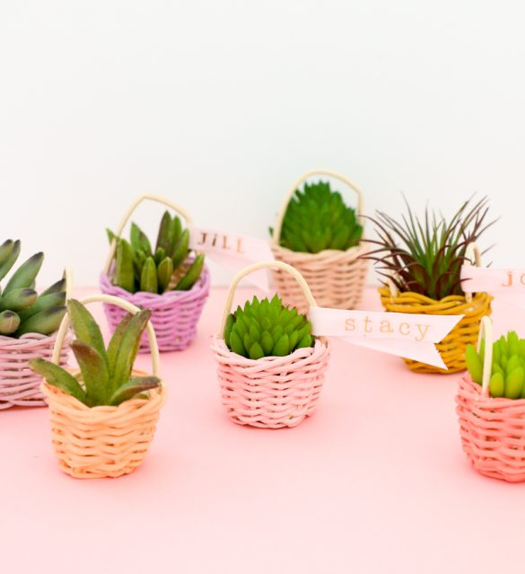 DIY Mini Succulent Easter Baskets