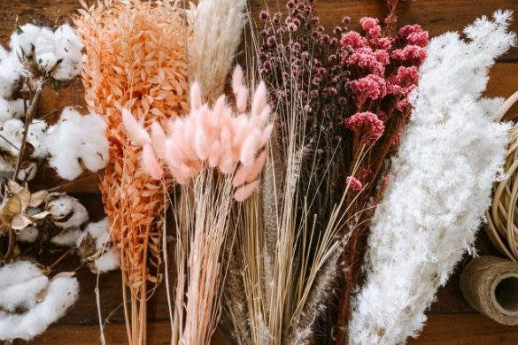 A Guide to Buying Dried Flowers & Leaves