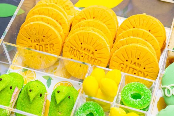 Girl Scout Cookie Season + Lemon-Ups Treat Box