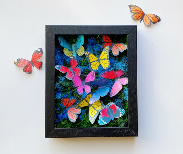 DIY Butterfly Shadow Box