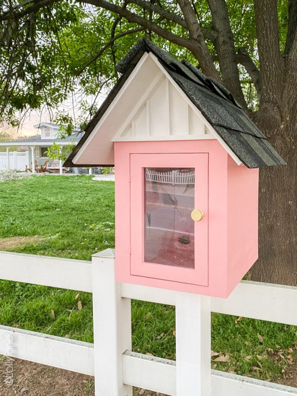 Cutest Pink Little Free Library Plus Plans