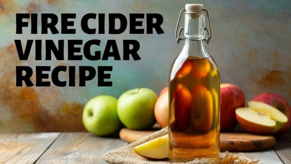 Fire Cider Vinegar: A Natural Cold and Flu Remedy
