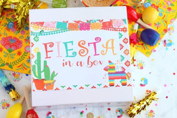 Fiesta in a Box Gift Idea