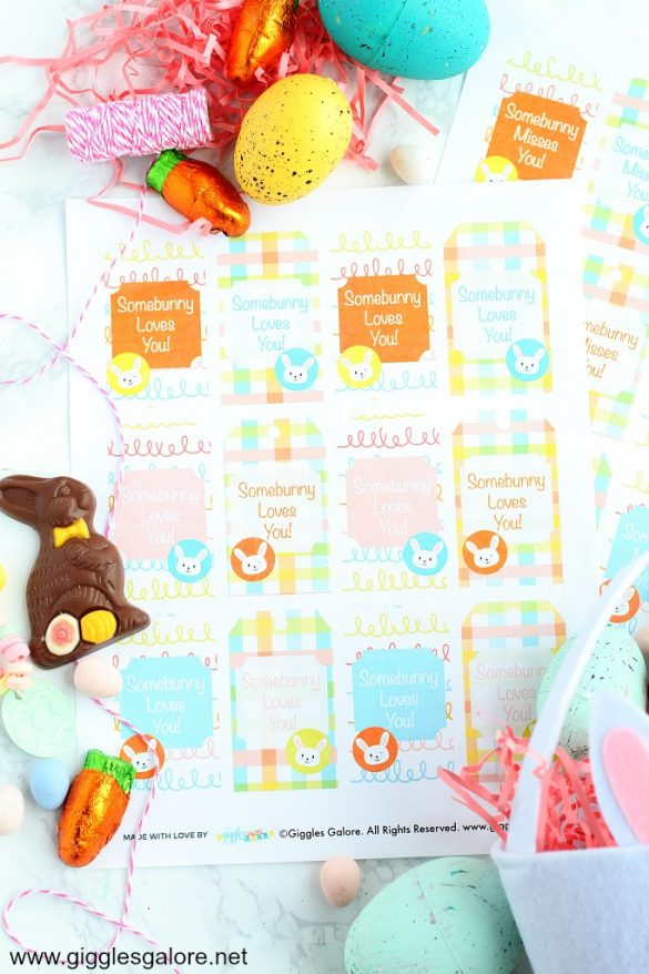Somebunny Loves You Easter Printable and Gift