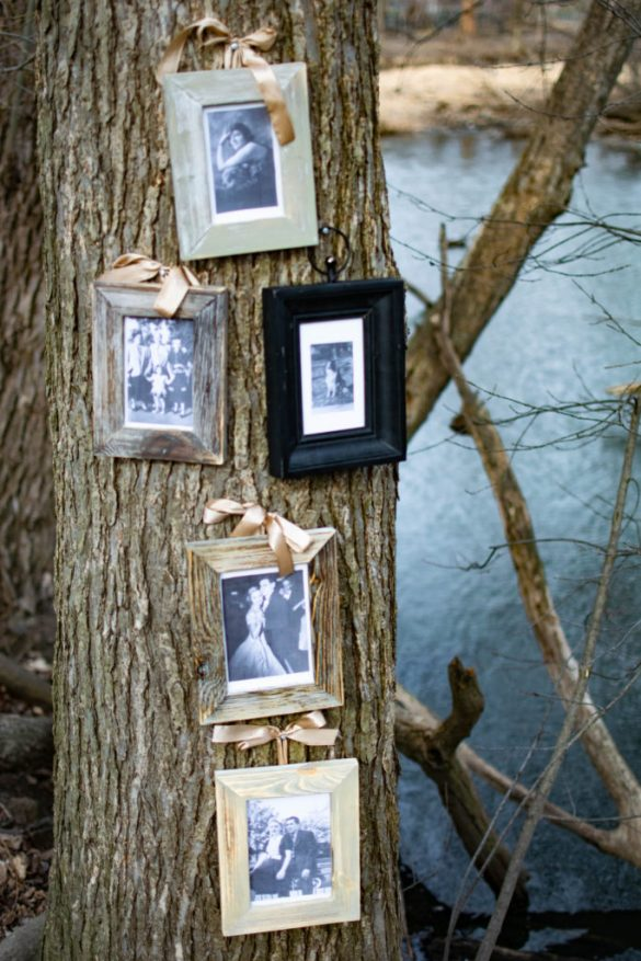 Creating a Family Tree for your Wedding Day with Christmas Tree Shops and That!