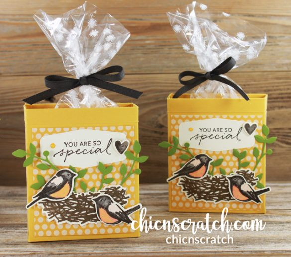 Birds & Branches Gift Box