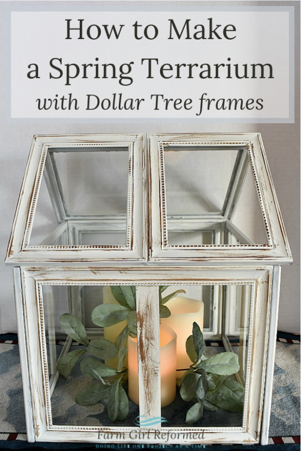 How to Make a Spring Terrarium with Dollar Tree Frames
