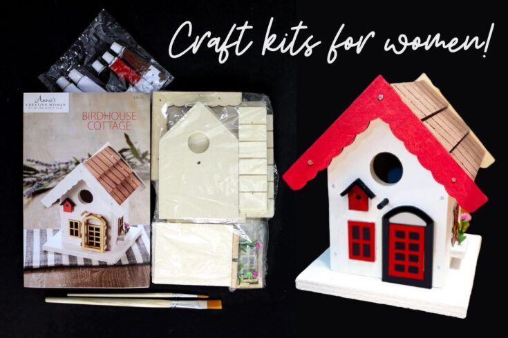 Adult Craft Kits for Women: Best Craft Kits Subscription Box for Creativity