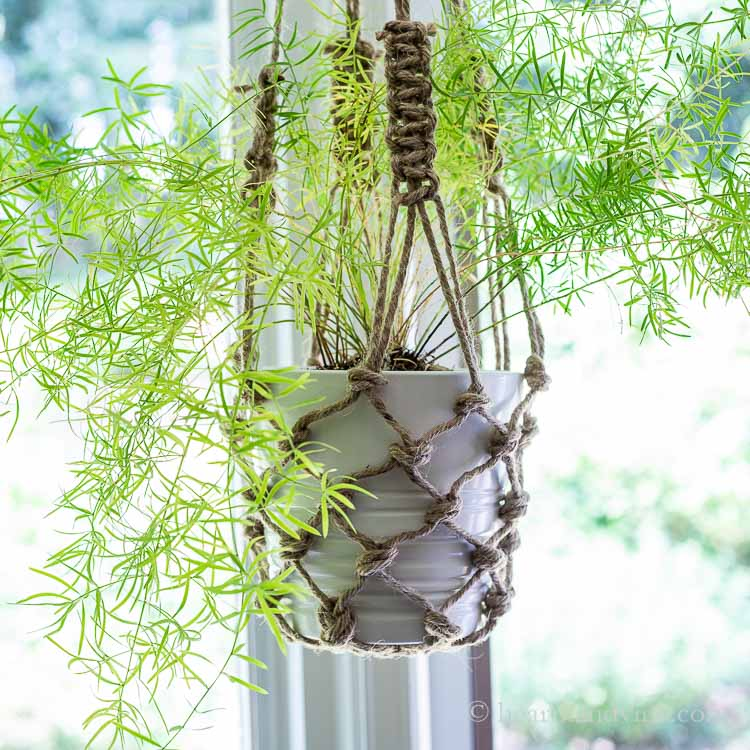 How to Make a Fishnet Hanging Planter