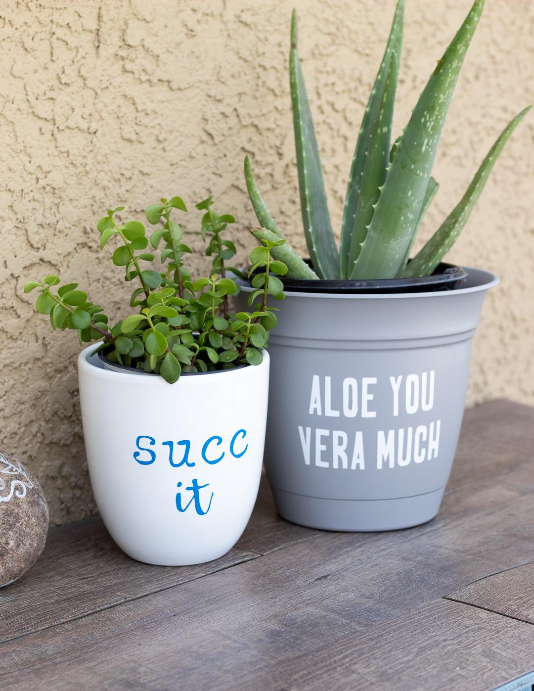 Cricut Explore Air 2:  DIY Funny Succulent Pots!