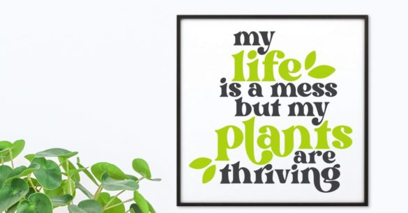 Plant SVGs for Plant Moms and Dads