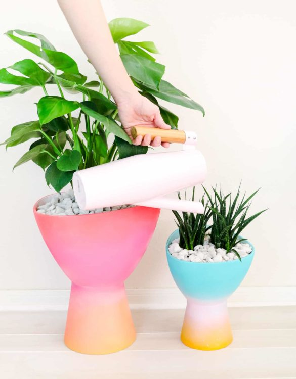 10 Unique Planters You Can Make at Home