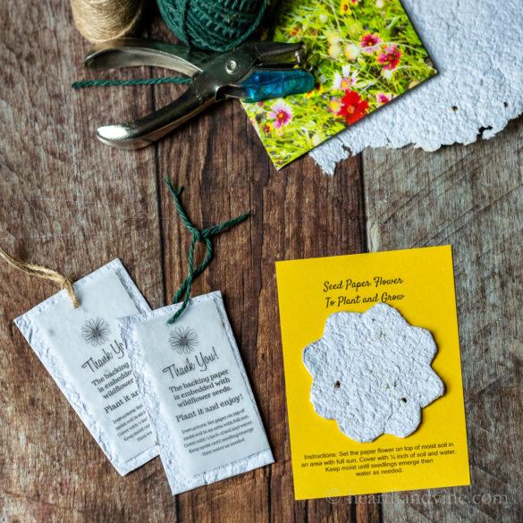 DIY Seed Paper Craft