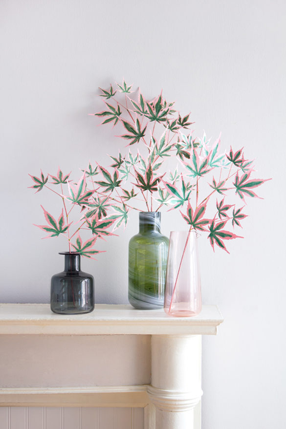 How to Style Indoor Plants