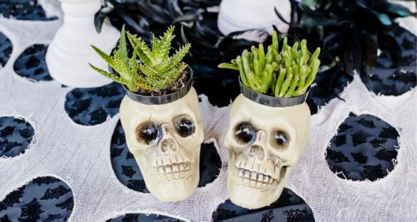 Halloween Skull Planter Decoration
