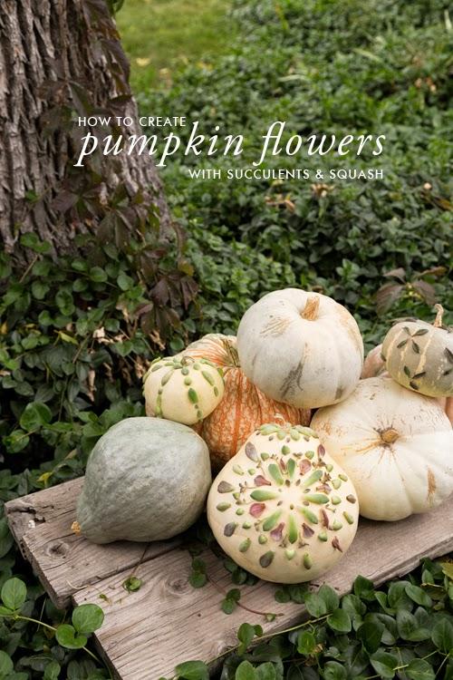 4 Ways to Make Succulent Pumpkins