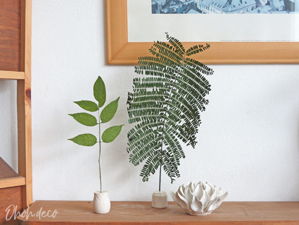 How to use Leaves as decoration